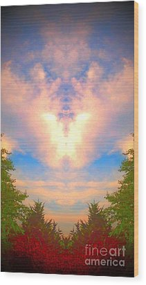 Wood Print featuring the photograph Butterfly Cloud by Karen Newell