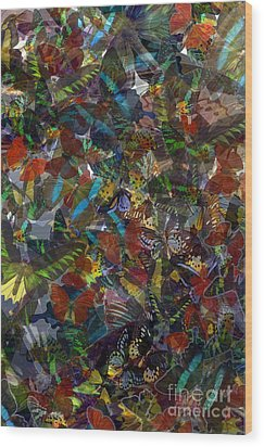 Wood Print featuring the photograph Butterfly Collage by Robert Meanor