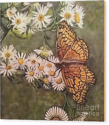 Butterfly Delight Wood Print by Kimberlee Baxter