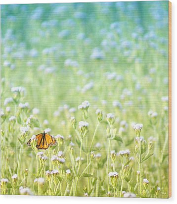 Butterfly Dreams Wood Print by Holly Kempe