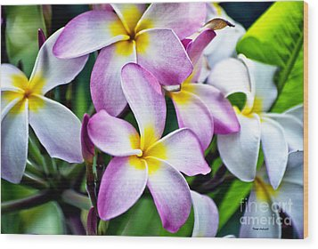 Wood Print featuring the photograph Butterfly Flowers by Thomas Woolworth