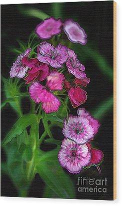 Wood Print featuring the digital art Butterfly Garden 02 - Carnations by E B Schmidt