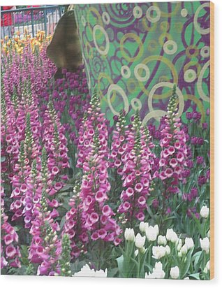 Wood Print featuring the photograph Butterfly Garden Purple White Flowers Painted Wall by Navin Joshi