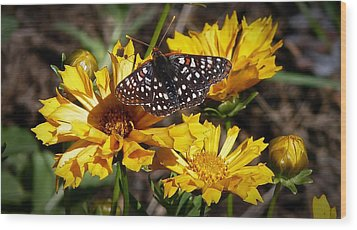 Wood Print featuring the photograph Butterfly Heaven by Julia Hassett