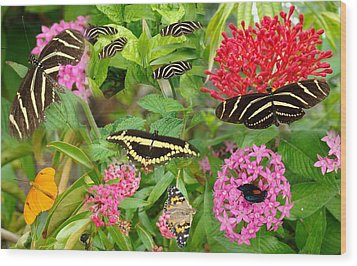 Butterfly High Wood Print
