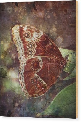Butterfly In My Garden Wood Print by Barbara Orenya