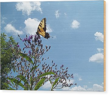 Butterfly In The Wild Wood Print