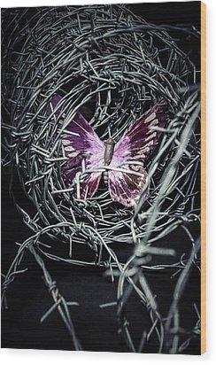 Butterfly Wood Print by Joana Kruse
