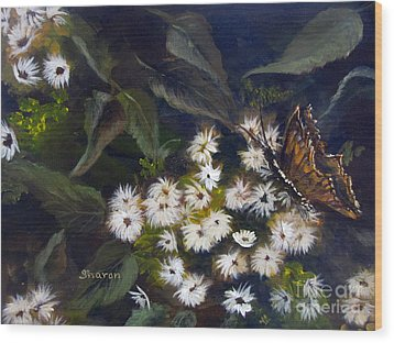 Butterfly Kisses Wood Print by Sharon Burger