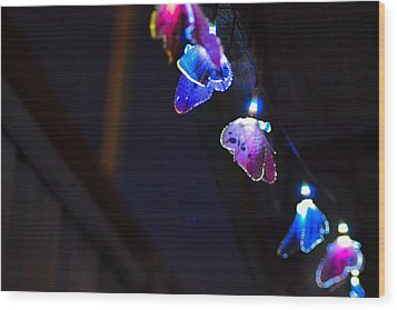 Wood Print featuring the photograph Butterfly Lights Hanging At Night  by Naomi Burgess