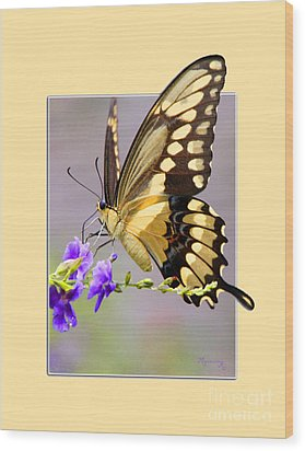 Butterfly Wood Print by Mariarosa Rockefeller