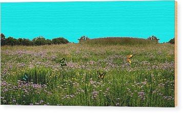Butterfly Meadow Wood Print by Larry Trupp