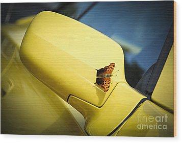 Butterfly On Sports Car Mirror Wood Print by Elena Elisseeva