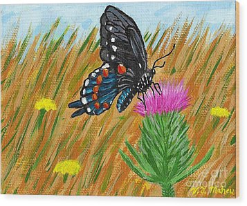 Butterfly On Thistle Wood Print by Vicki Maheu