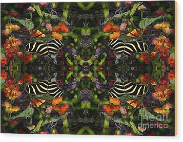 Wood Print featuring the digital art Butterfly Reflections 03 - Zebra Heliconian by E B Schmidt
