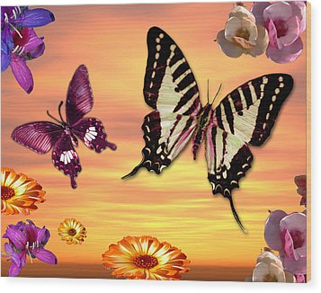 Butterfly Sunset Wood Print by Alixandra Mullins