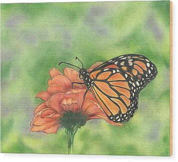 Wood Print featuring the drawing Butterfly by Troy Levesque