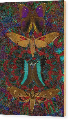 Solar Butterfly Wood Print by Joseph Mosley