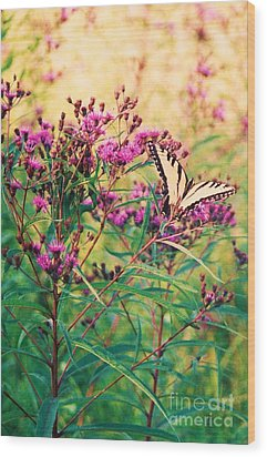 Wood Print featuring the painting Butterfly Wildflower by Eric  Schiabor