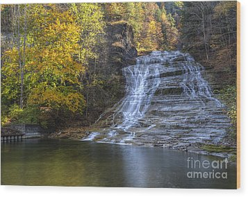 Buttermilk Falls Autumn Wood Print by Colin D Young