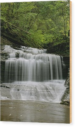 Buttermilk Falls Wood Print by Judd Connor