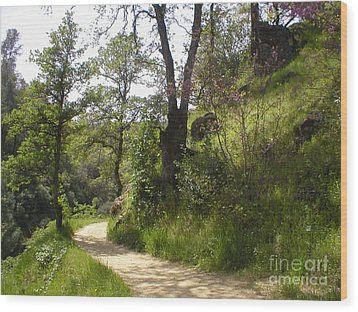 Wood Print featuring the photograph Buttermilk Trail South Yuba by Rachel Lowry