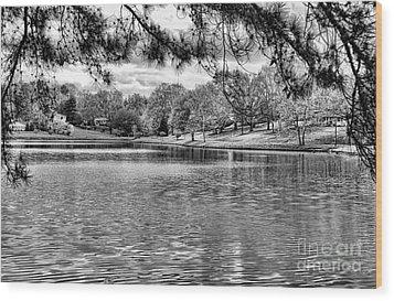 Bw Lake Views  Wood Print by Chuck Kuhn