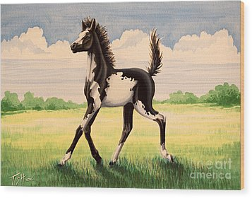 Bw Painted Foal Wood Print by Tish Wynne