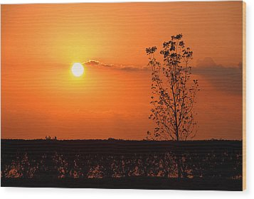 Wood Print featuring the photograph By The Everglades by Lorenzo Cassina