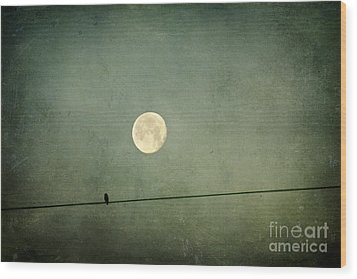 By The Light Of The Moon Wood Print by Joan McCool