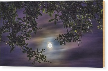 By The Moonlight Wood Print by Rob Sellers