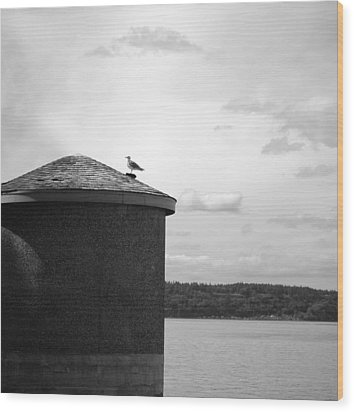 Wood Print featuring the photograph By The Water by Kjirsten Collier