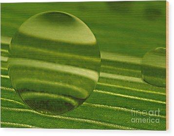 C Ribet Orbscape Green Jupiter Wood Print