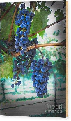 Cabernet Sauvignon Grapes Wood Print by Robert Bales