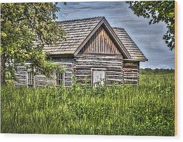 Cabin 1 Wood Print