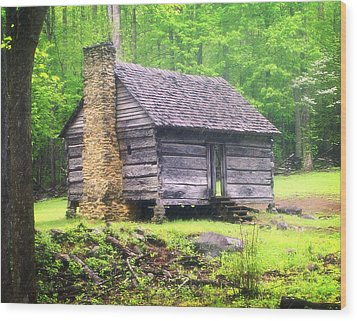 Cabin In The Smokies Wood Print by Marty Koch