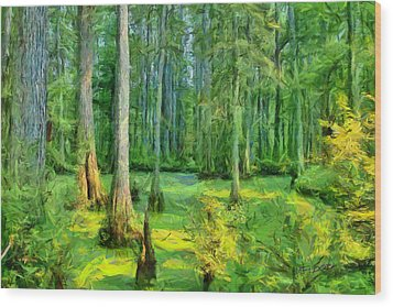 Cache River Swamp Wood Print by Michael Flood