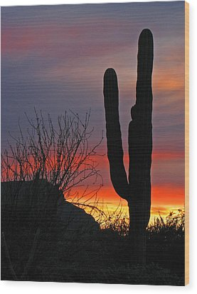 Cactus At Sunset Wood Print