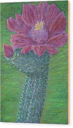 Cactus Bloom Wood Print by Dawn Marie Black