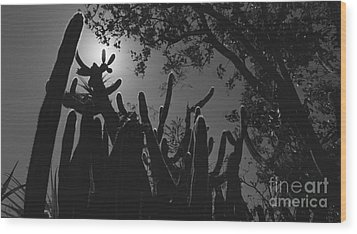 Wood Print featuring the photograph Cactus Family by Kenny Glotfelty