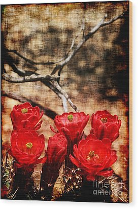Wood Print featuring the photograph Cactus Flowers 2 by Julie Lueders