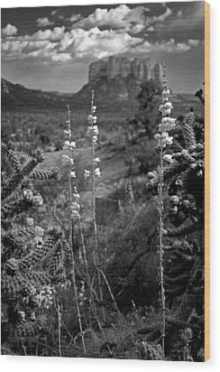 Cactus Flowers And Courthouse Bluff Bw Wood Print by Dave Garner
