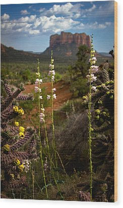 Wood Print featuring the photograph Cactus Flowers And Courthouse Bluff by Dave Garner