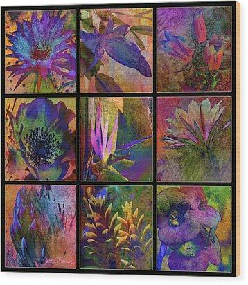 Cactus Flowers Wood Print by Barbara Berney