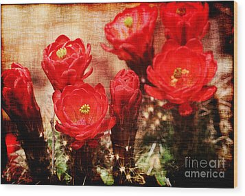 Wood Print featuring the photograph Cactus Flowers by Julie Lueders