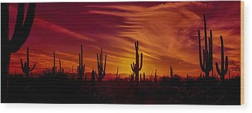 Cactus Glow Wood Print by Mary Jo Allen