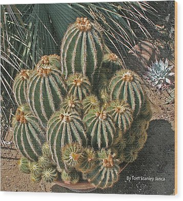 Cactus In The Garden Wood Print by Tom Janca