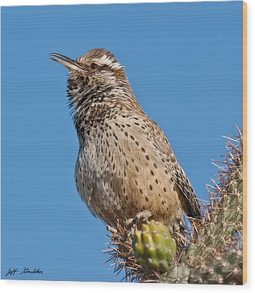 Cactus Wren Singing Wood Print by Jeff Goulden