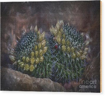 Cactuses  ... Wood Print by Chuck Caramella