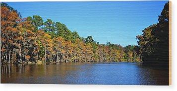 Caddo Lake 1 Wood Print by Ricardo J Ruiz de Porras